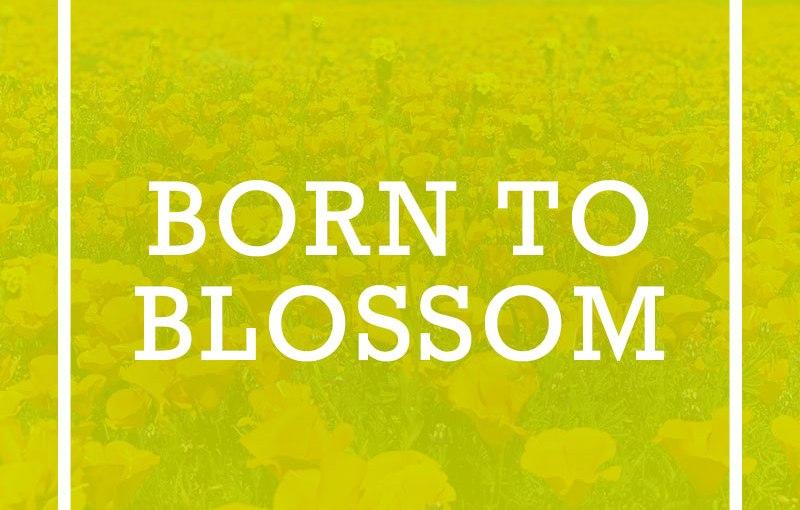 Born to Blossom